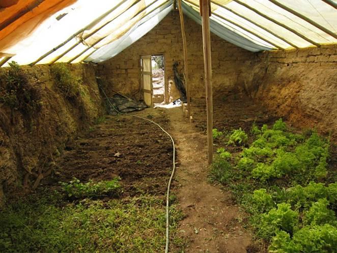 Build an underground greenhouse and garden year-round
